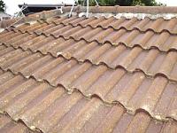 モニエル瓦屋根の雨漏り補修前