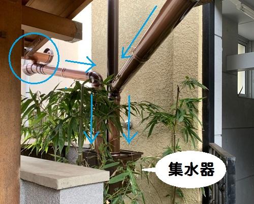雨樋リフォーム竪樋集水器