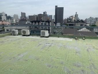 FRP防水が劣化した写真
