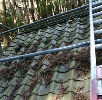 瓦屋根葺き替え工事前
