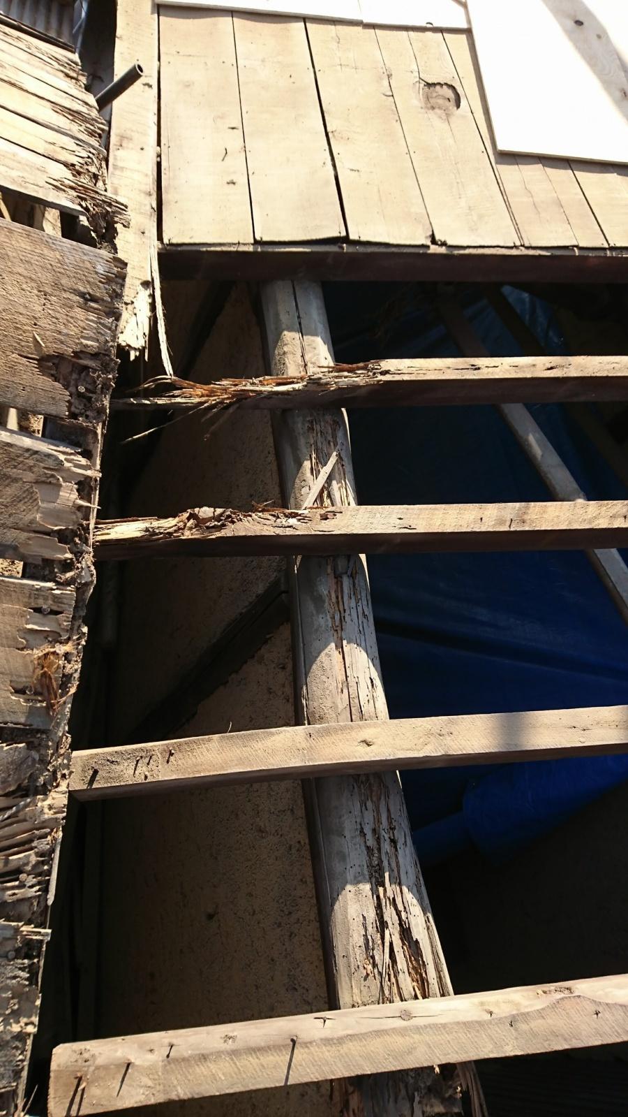 東深津町屋根下地写真
