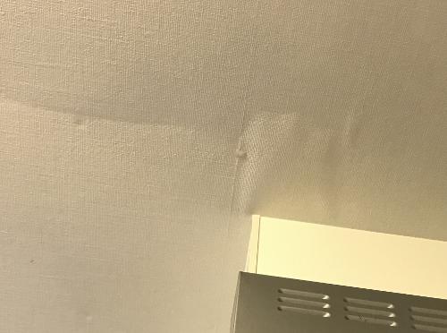 天井から雨漏り