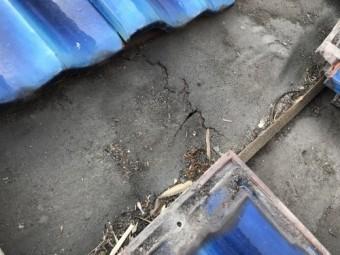 防水紙の傷み