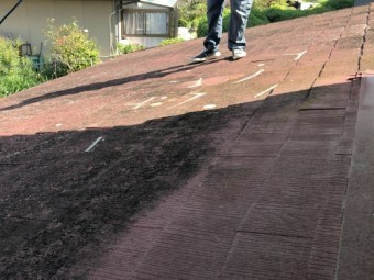 カラーベスト屋根の調査