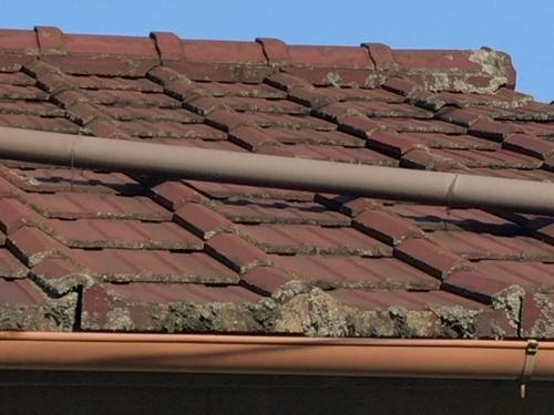 セメント瓦屋根の点検