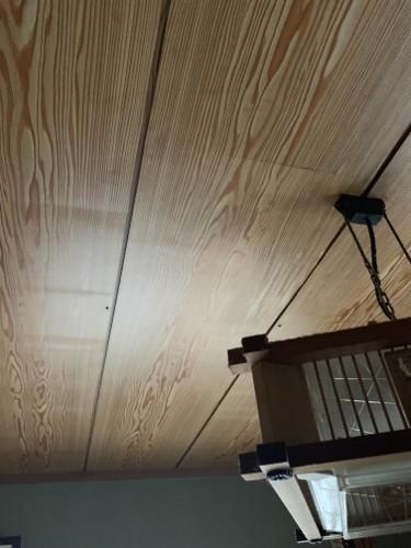 幕山台天井