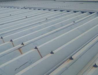 屋根の補修工事